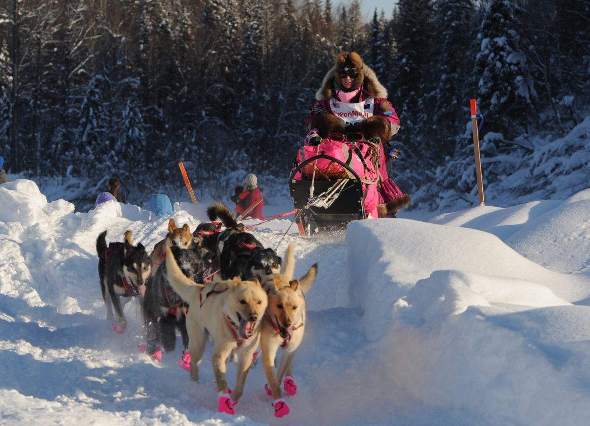 Hanh trinh kham pha dua xe cho Sled o Alaska USA My
