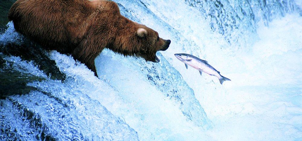 Alaska, điểm dừng lịch sử trong biên giới cuối cùng
