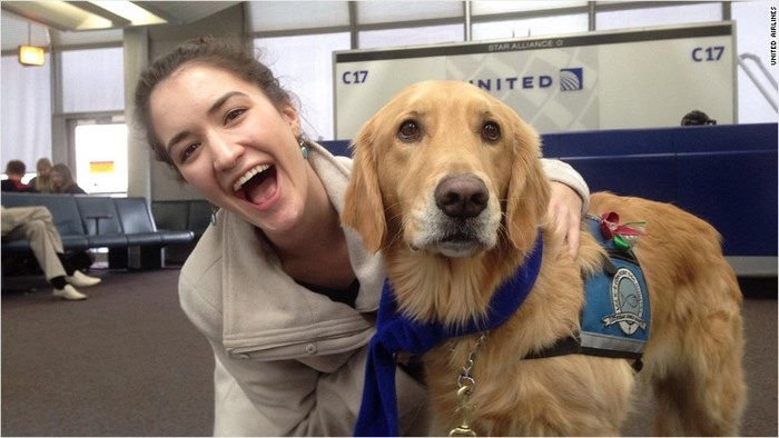 Petsafe United Airlines